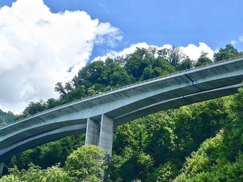 highway bridge leading over a mountain forest