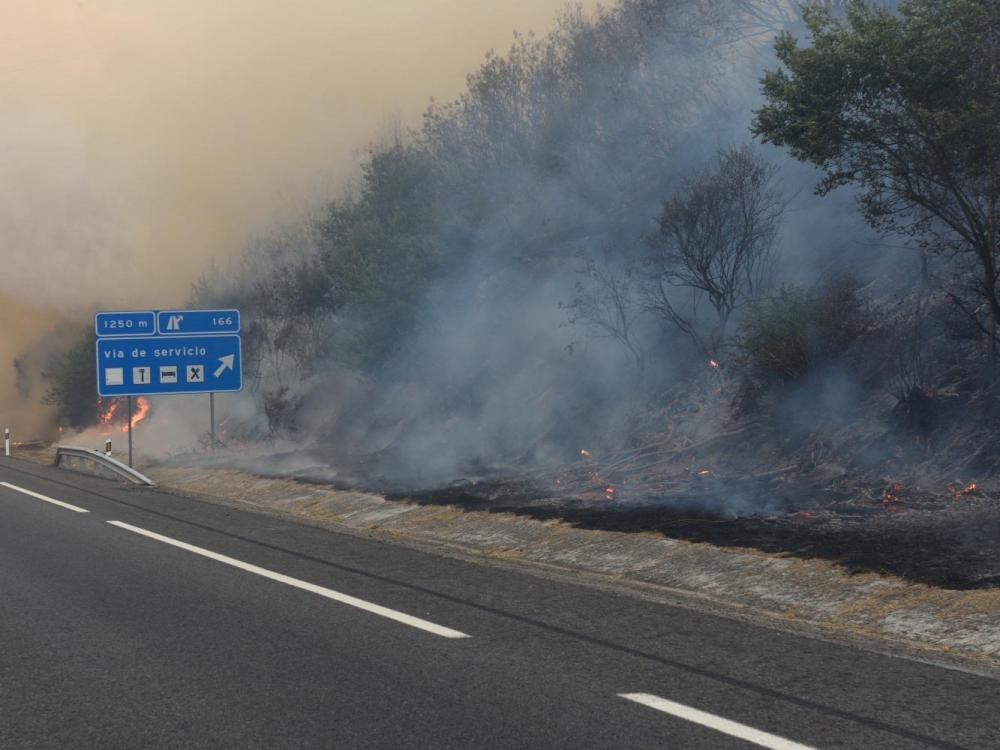 Forest Fire next to a hishway